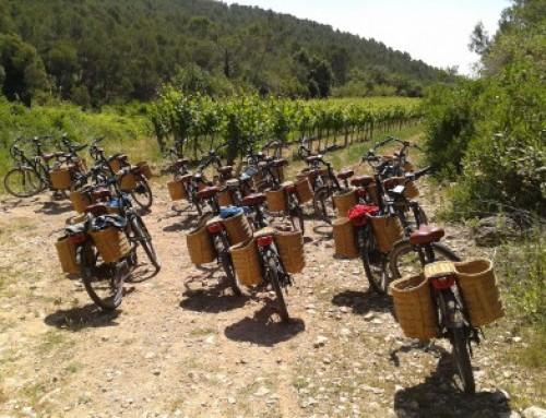 Slow travel, viñedos y bicicletas eléctricas