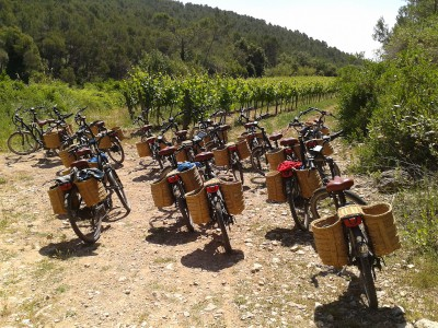 bicicleta-vinedos-slow-travel