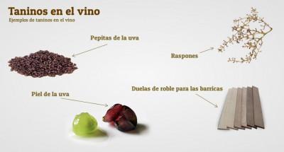 taninos-del-vino